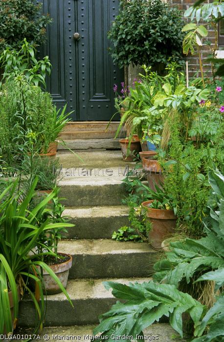 Concrete steps, front door