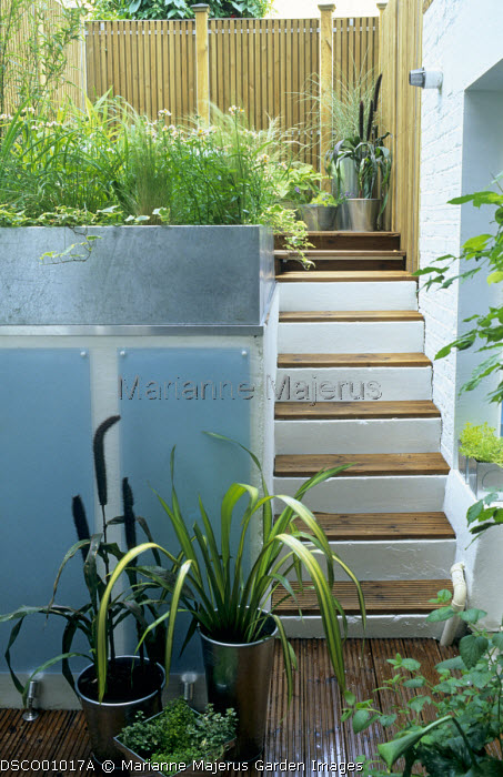 Split-level garden, steel planters, steps, glass panels