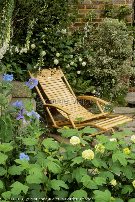 Wooden steamer chair by David Craig, Viburnum opulus, Hydrangea quercifloia, Meconopsis betonicifolia