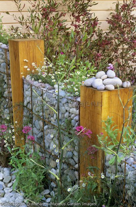 Stones filled gabion, erigeron,valerian