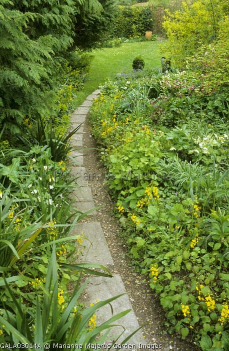 Curved path, Epimedium pinnatum, Helleborus x hybridus, anemones, view to lawn