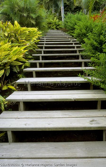 Wooden walkway, stairs