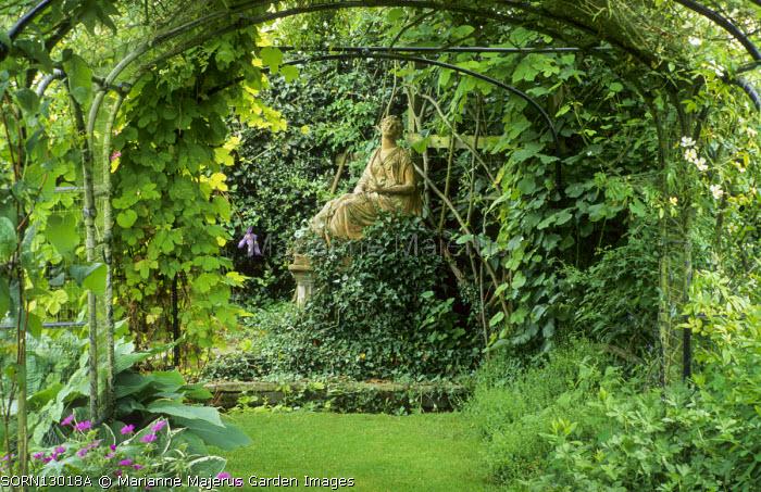 Calliope statue, Humulus lupulus 'Aureus'