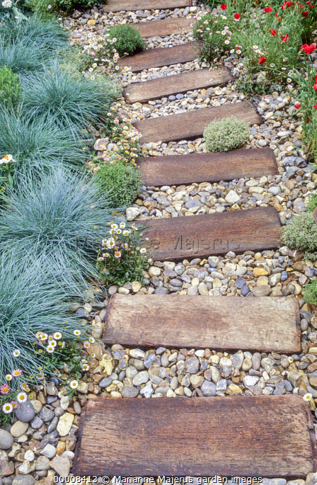 Driftwood path, Festuca glauca 'Intense Blue'