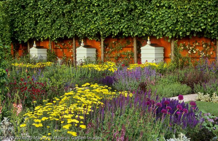Beehives, pleached Tilia x europaea 'Pallida', Achillea aegyptiaca var. taygetea, salvias, alliums