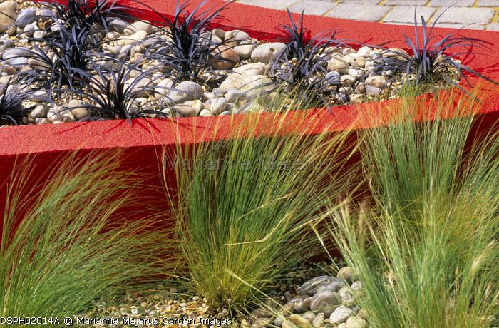 Stipa tenuissima and Ophiopogon planiscapus 'Nigrescens' in raised bed, concrete rendererd walls