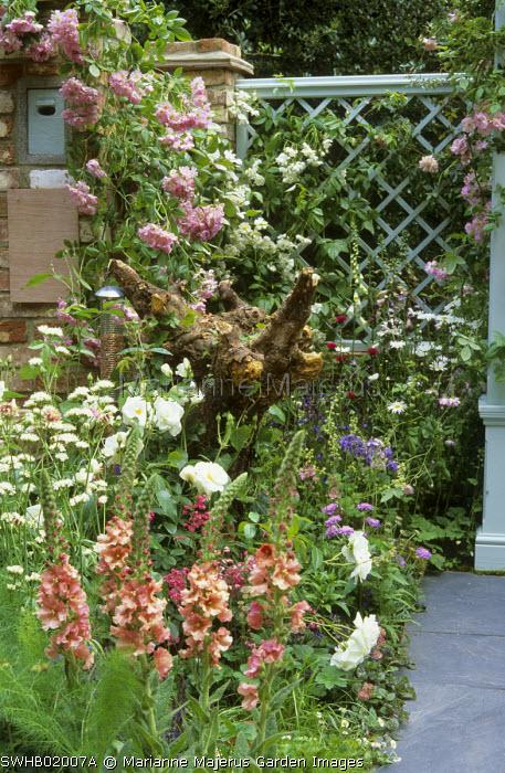 Wildlife garden, stump in flower border, bat box