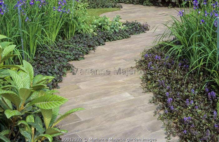 Winding stone path, Ajuga reptans edging, irises
