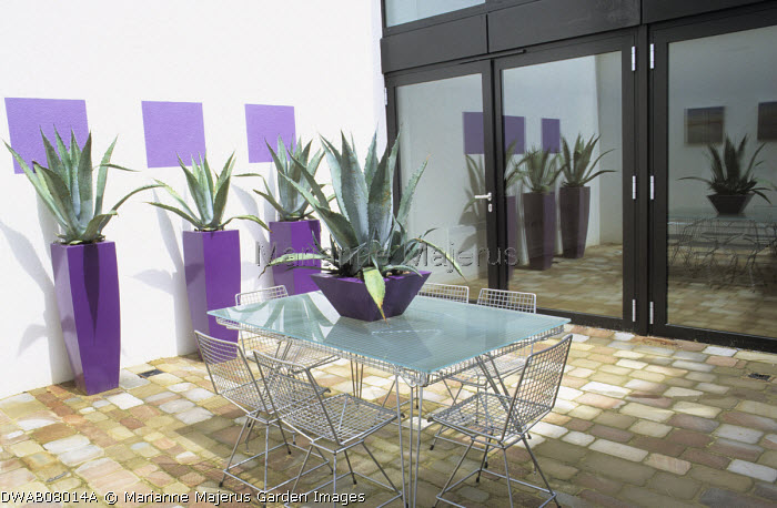 Metal chairs around glass table, stone paving, Agave americana in tall purple containers
