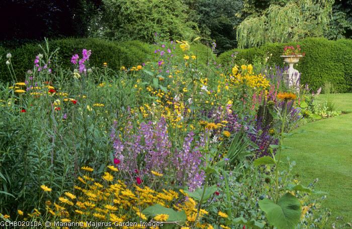 Curved border, hedge, lawn, urn, Salvia sclarea var. turkestanica