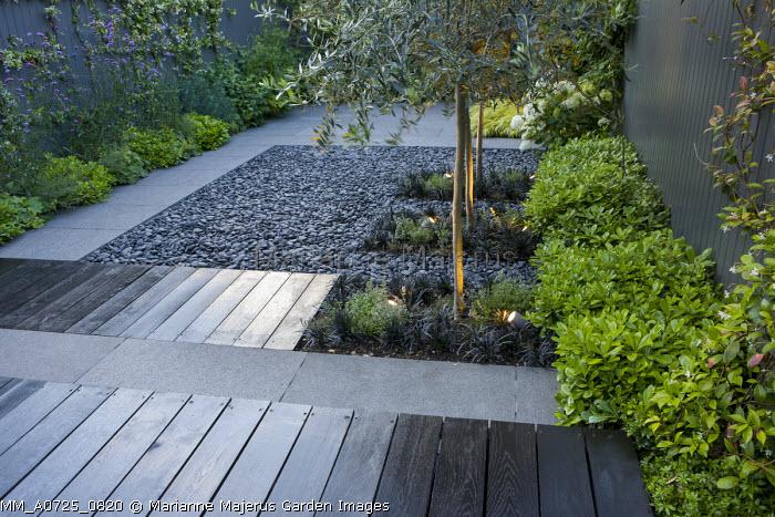 Ophiopogon planiscapus 'Nigrescens' around base of uplit olive trees, black pebbles, Pittosporum tobira 'Nanum', grey painted fence, Verbena bonariensis, oak decking, stone paving