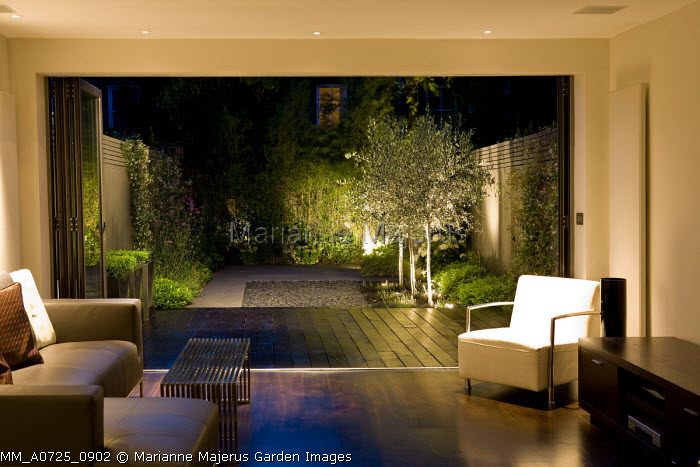 View from inside house to black painted oak decking outside, Ophiopogon planiscapus 'Nigrescens' around base of uplit olive trees, black pebbles, Pittosporum tobira 'Nanum', grey painted fence