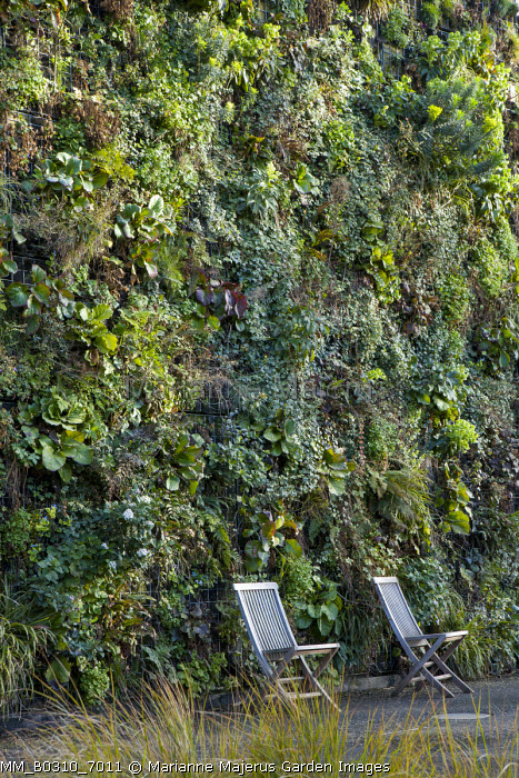 'Green wall'