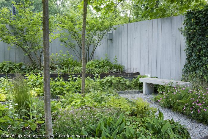 Woodland garden, bench, concrete wall