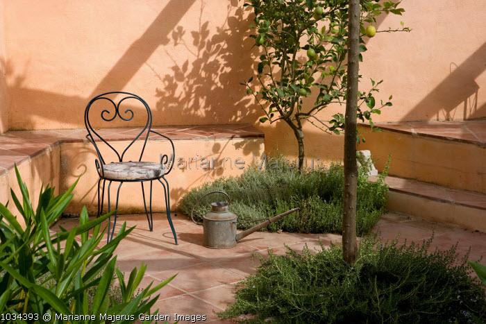 Pergola, herbs in paving