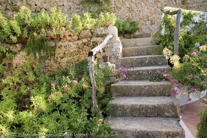 Steps to casita, rustic wooden handrails