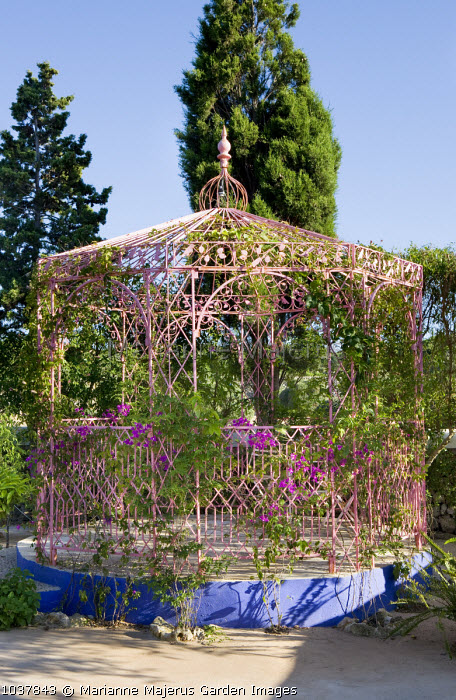 Indian wrought-iron pavilion, bougainvillea