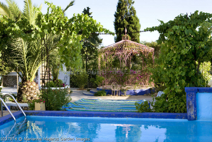 Swimming pool, view to Indian wrought-iron pavilion, palm, vine