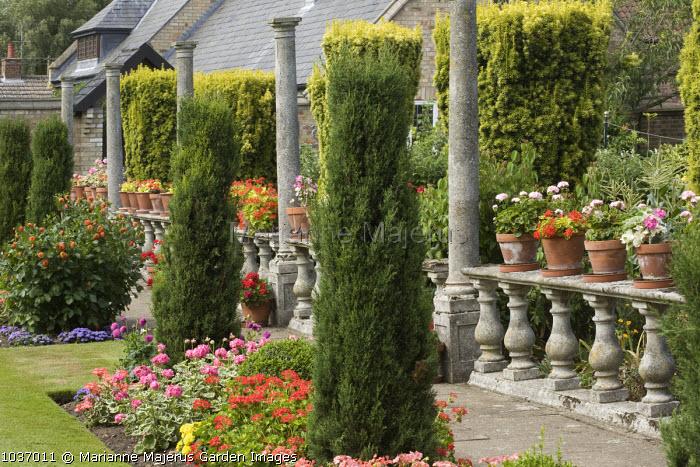 Balustrade with pelargoniums in potsaa