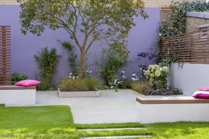 Low walls used as seating, cushions lilac tree