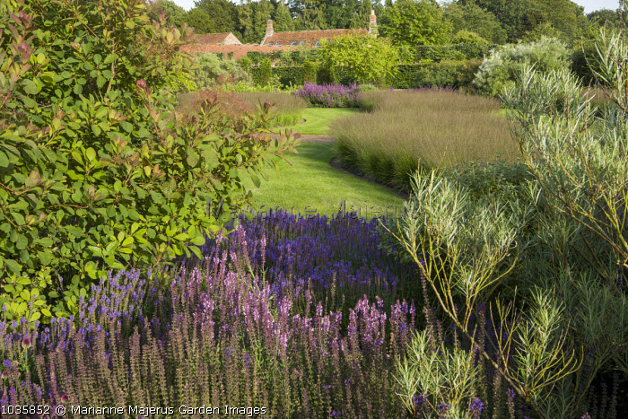 View over drifts of Molinia caerulea at Scampston Hall