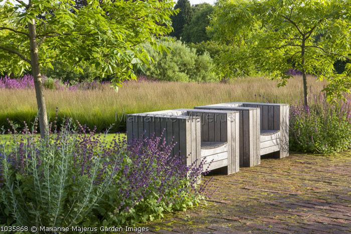 Chairs by Piet Hein Eek, Salvia nemorosa 'Amethyst', Molinia caerulea, Phellodendron chinense