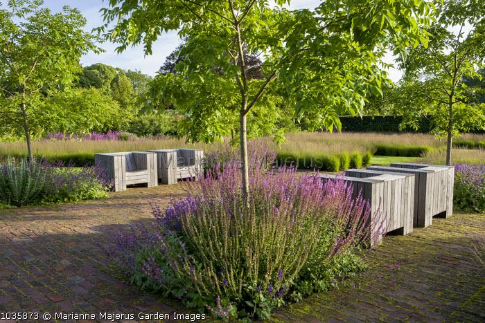 Salvia nemorosa 'Amethyst', Molinia caerulea, Phellodendron chinense, Chairs by Piet Hein Eek