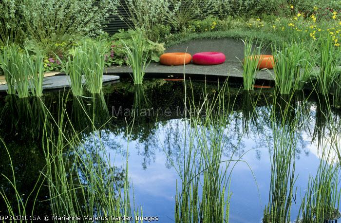 Dark pool with Iris pseudacorus and Equisetum hyemale