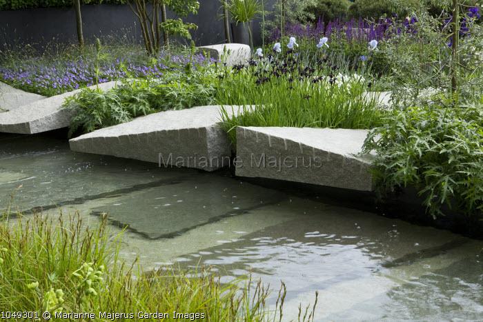 Contemporary rock garden, Iris chrysographes, granite boulders