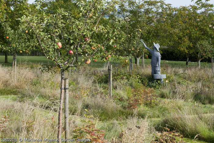 Apple orchard, apple-picker sculpture