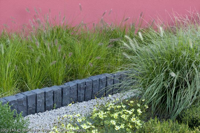 Coreopsis verticillata 'Moonbeam and pennisetum, low slate granite raised bed edging