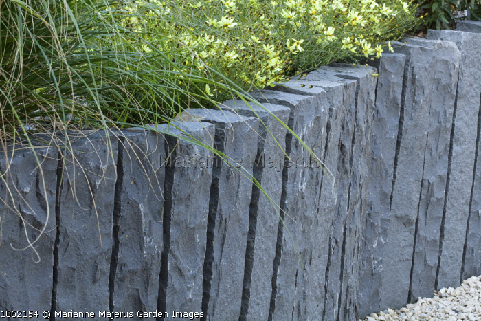 Coreopsis verticillata 'Moonbeam', low granite raised bed edging