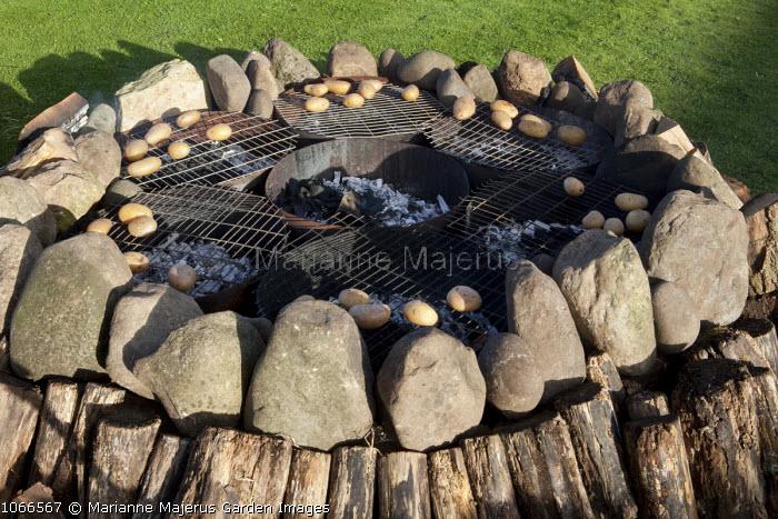 Baking potatoes on fire