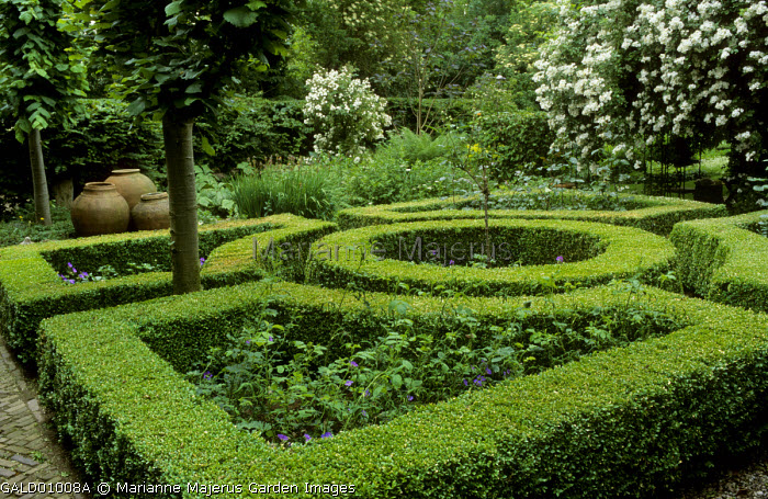 Formal box-edged garden, clipped box parterre, pithoi, Lime trees