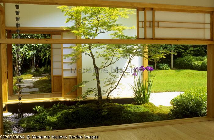 View from tea house through screens to garden, acer, irises