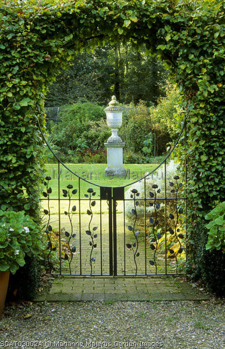Wrought iron gate with floral motif, arching beech hedge, view to urn