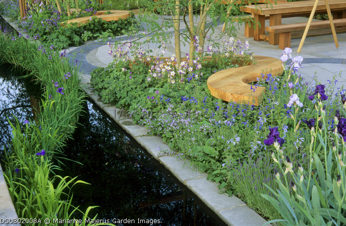 Wavy wooden bench in purple border, irises in pond around terrace of Indian stone