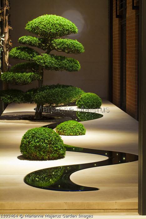The Moon Terrace, black granite pool, clipped box balls, cloud-pruned box tree, niwaki
