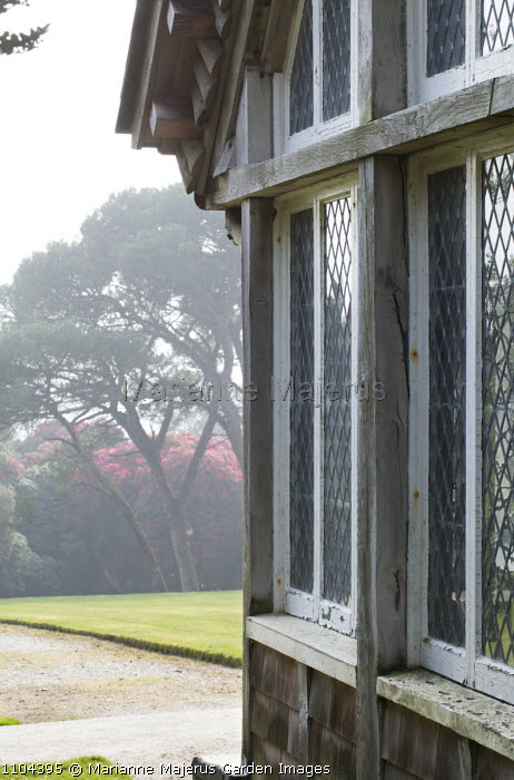 Edwardian summerhouse, view to Scots pines and rhododendrons