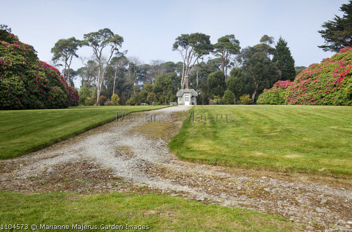 View to Edwardian summerhouse, Scots pines, rhododendrons