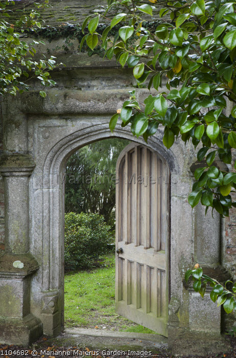 View through stone arch into walled garden, Tea plants, Camellia sinensis, wooden gate