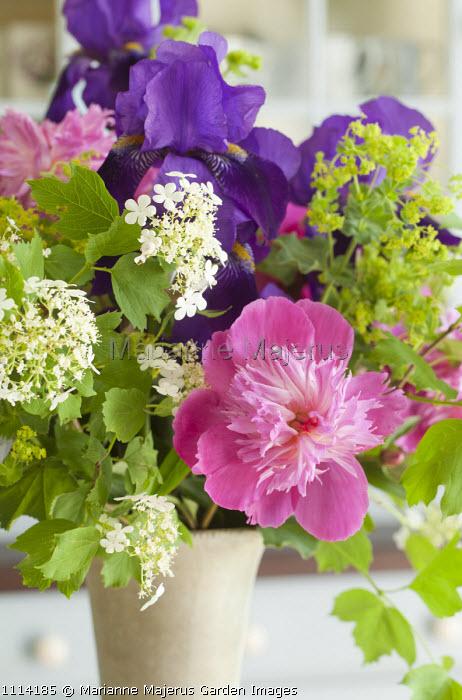 Bouquet of cut flowers, peony, irises, hydrangea and alchemilla in vase