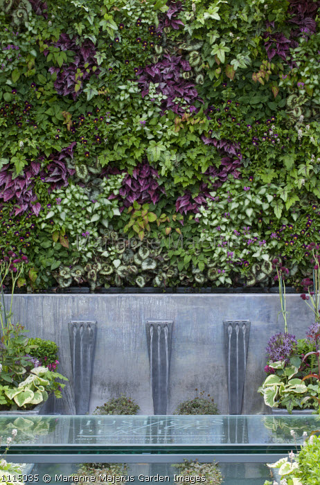 Living green wall, Begonia rex 'Escargot', Epimedium rubrum, Tiarella 'Ninja', Lamium 'Beacon Silver', viola, water fountains