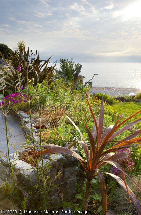 View across small coastal garden to sea, phormium