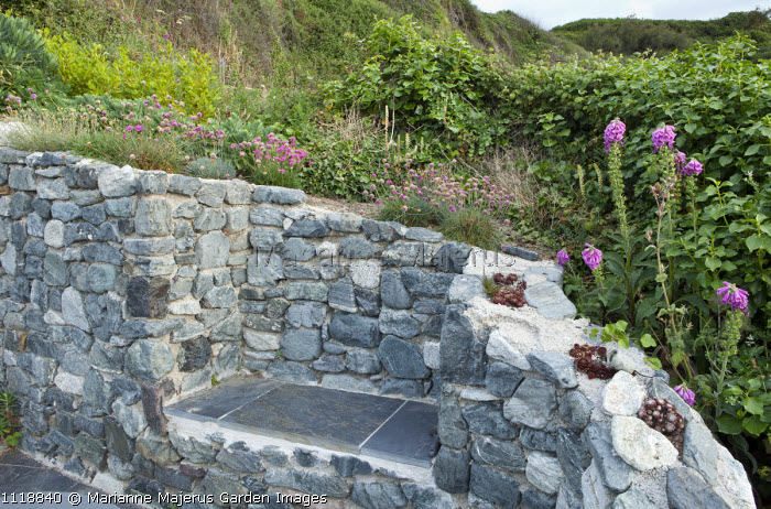 Built-in slate bench in stone wall, sempervivums in wall