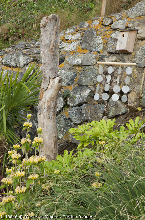 Shell wind chimes, bird box, driftwood, Phlomis russeliana