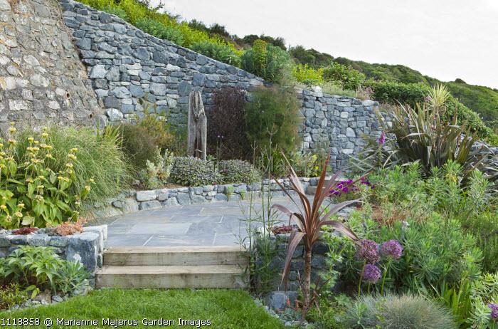 Coastal garden, Allium cristophii, euphorbia, grasses, phormium, phlomis