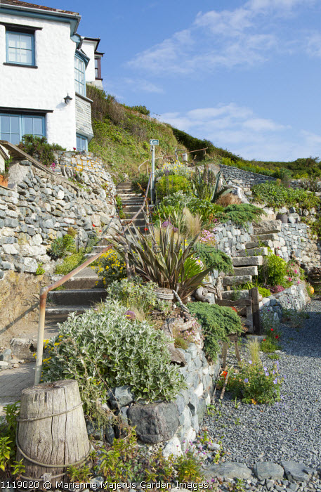 Sloping seaside garden, shingle beach, phormium