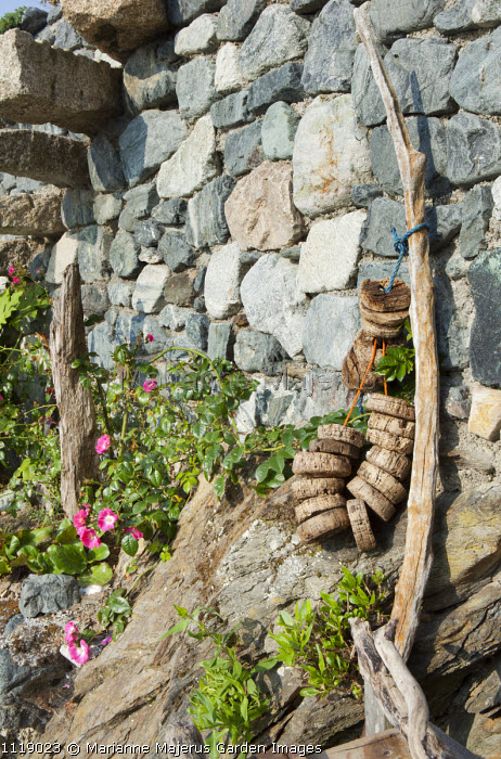 Stone wall, driftwood, rose, cork floaters