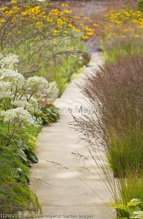 View along path, Molinia caerulea subsp. caerulea 'Poul Petersen', Selinum wallichianum syn. Selinum tenuifolium